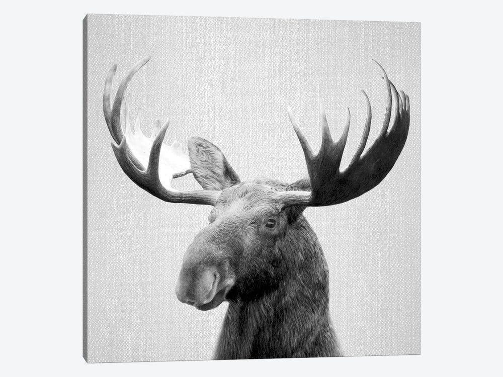 Moose In Black & White by Gal Design 1-piece Art Print