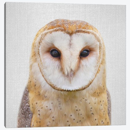 Owl Canvas Print #GAD45} by Gal Design Art Print
