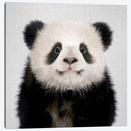 Panda Bear Canvas Print #GAD46} by Gal Design Canvas Art Print