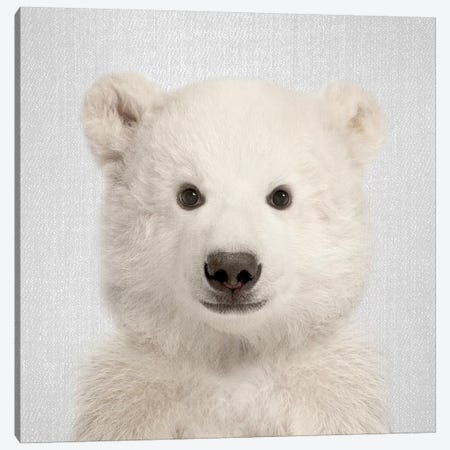 Polar Bear Canvas Print #GAD49} by Gal Design Canvas Artwork