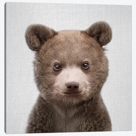 Baby Bear Canvas Print #GAD4} by Gal Design Canvas Artwork
