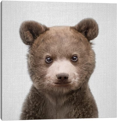 Baby Bear Canvas Art Print
