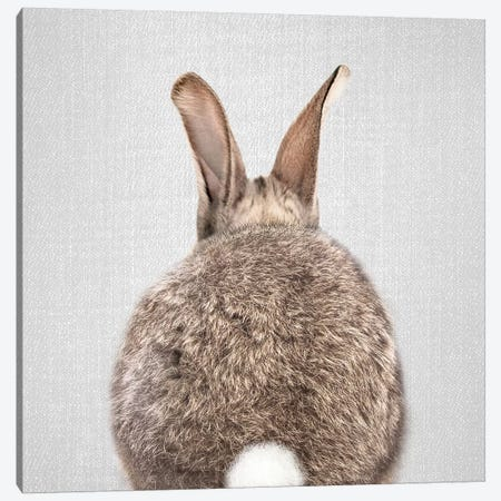 Rabbit Tail Canvas Print #GAD51} by Gal Design Art Print