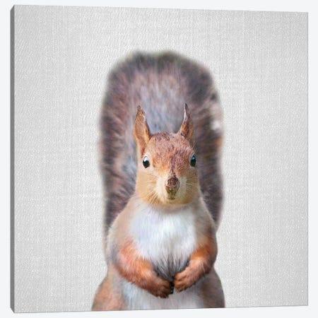 Squirrel Canvas Print #GAD55} by Gal Design Canvas Artwork