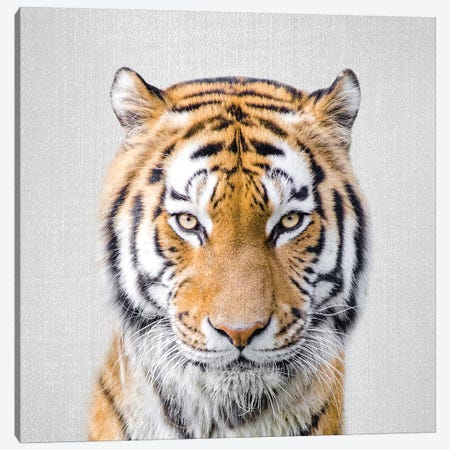Tiger Canvas Print #GAD56} by Gal Design Canvas Wall Art