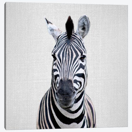 Zebra I Canvas Print #GAD57} by Gal Design Canvas Artwork
