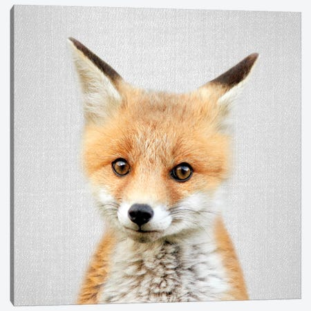 Baby Fox Canvas Print #GAD5} by Gal Design Canvas Art