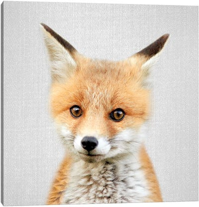 Baby Fox Canvas Art Print