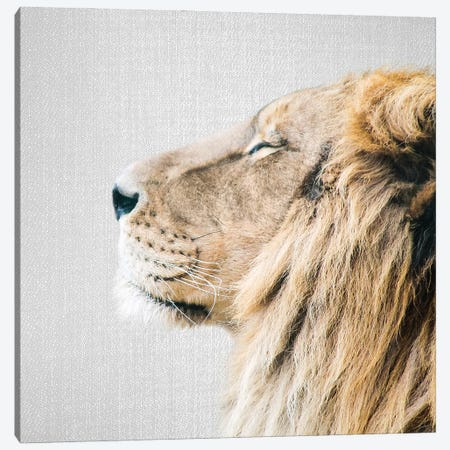 Lion Portrait Canvas Print #GAD68} by Gal Design Canvas Art