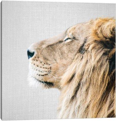 Lion Portrait Canvas Art Print