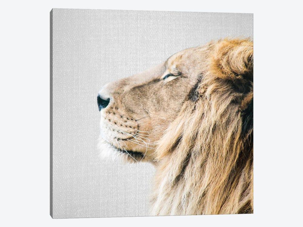 Lion Portrait by Gal Design 1-piece Canvas Wall Art