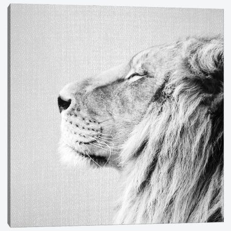 Lion Portrait In Black & White Canvas Print #GAD69} by Gal Design Canvas Artwork