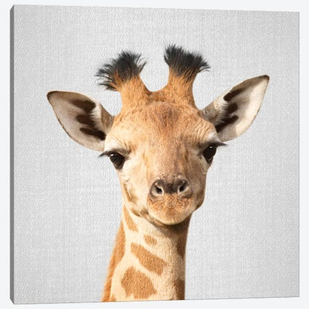 Baby Giraffe Canvas Print #GAD6} by Gal Design Canvas Art