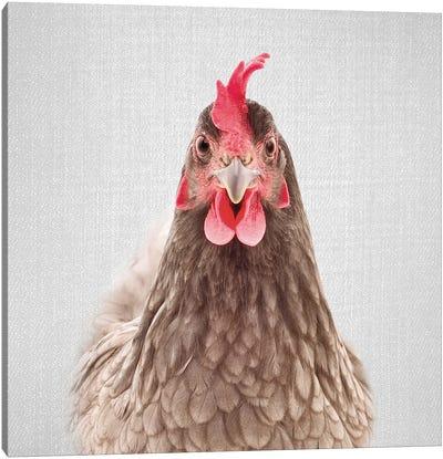 Chicken Canvas Art Print