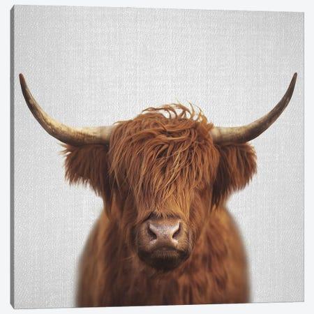 Highland Cow Canvas Print #GAD72} by Gal Design Canvas Print