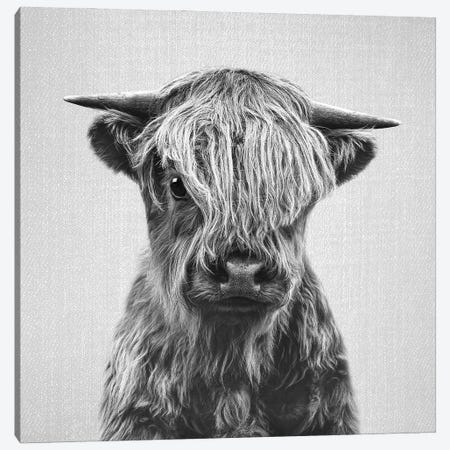 Highland Calf In Black & White Canvas Print #GAD75} by Gal Design Canvas Artwork