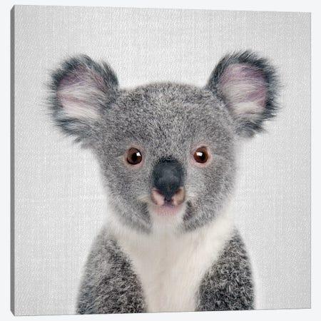 Baby Koala Canvas Print #GAD8} by Gal Design Canvas Print
