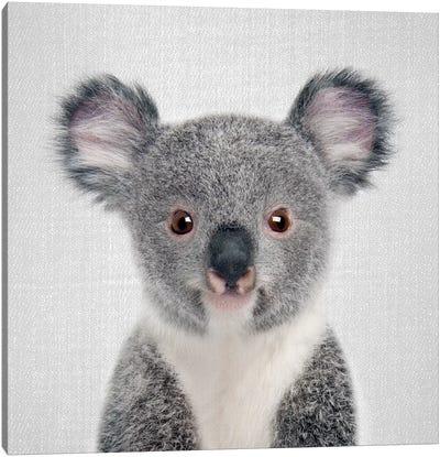 Baby Koala Canvas Art Print