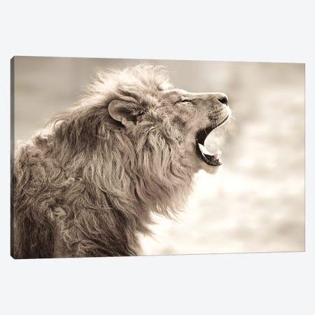 Lion Smoke Canvas Print #GAN67} by Goran Anastasovski Canvas Print
