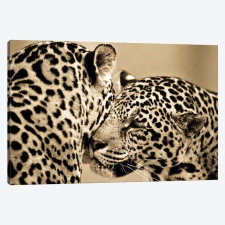 True Love Canvas Print #GAN99} by Goran Anastasovski Art Print