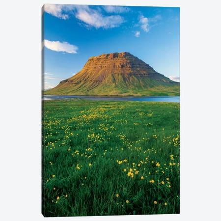 Buttercup Meadow II, Kirkjufell, Grundarfjordur, Snaefellsnes Peninsula, Vesturland, Iceland Canvas Print #GAR10} by Gareth McCormack Art Print