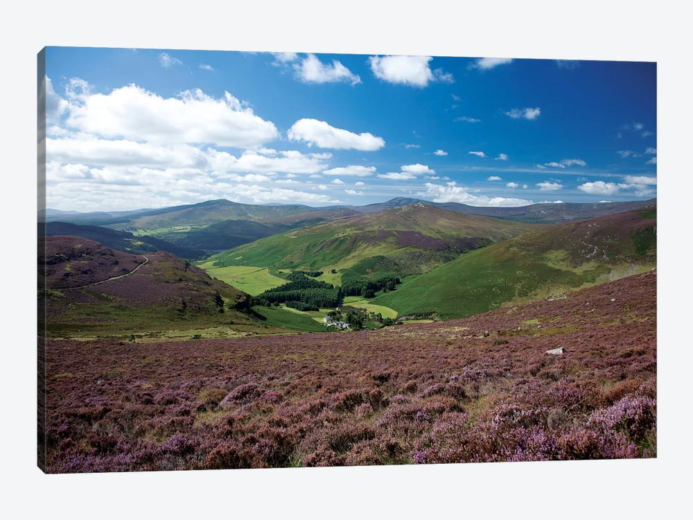 Cloghoge Valley I, Wicklow Mountains, County Wicklow, Leinster Province, Republic Of Ireland by Gareth McCormack 1-piece Canvas Art Print