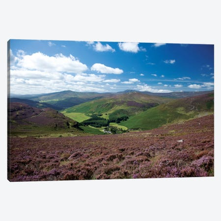 Cloghoge Valley I, Wicklow Mountains, County Wicklow, Leinster Province, Republic Of Ireland 3-Piece Canvas #GAR11} by Gareth McCormack Art Print