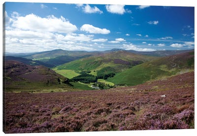 Cloghoge Valley I, Wicklow Mountains, County Wicklow, Leinster Province, Republic Of Ireland Canvas Art Print