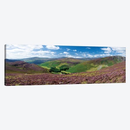 Cloghoge Valley II, Wicklow Mountains, County Wicklow, Leinster Province, Republic Of Ireland Canvas Print #GAR12} by Gareth McCormack Canvas Art Print