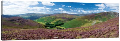 Cloghoge Valley II, Wicklow Mountains, County Wicklow, Leinster Province, Republic Of Ireland Canvas Art Print