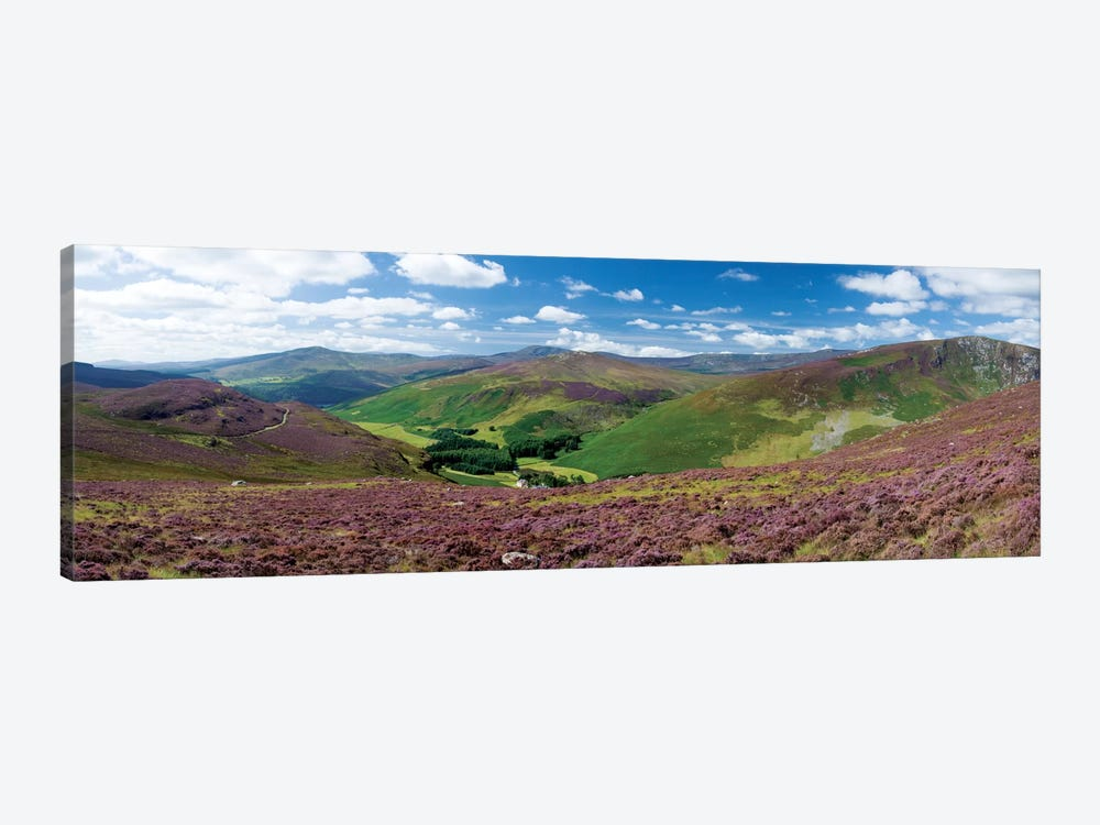 Cloghoge Valley II, Wicklow Mountains, County Wicklow, Leinster Province, Republic Of Ireland by Gareth McCormack 1-piece Canvas Art