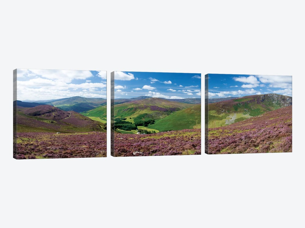 Cloghoge Valley II, Wicklow Mountains, County Wicklow, Leinster Province, Republic Of Ireland by Gareth McCormack 3-piece Canvas Artwork