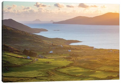 Evening Light Over Fields And Skellig Islands From Ballinskelligs Bay II, County Kerry, Ireland Canvas Art Print