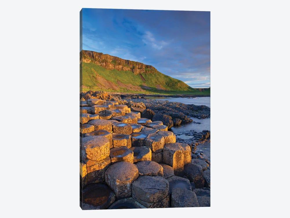 Evening Light II, Giant's Causeway, Co Antrim, Northern Ireland by Gareth McCormack 1-piece Canvas Art Print