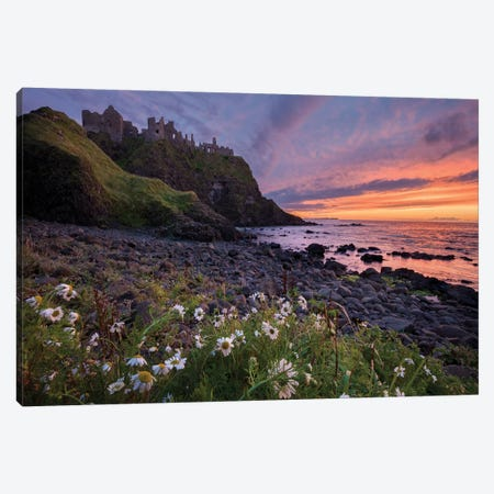 Evening Ox-Eye Daisies Beneath Dunluce Castle, Causeway Coast, County Antrim, Northern Ireland Canvas Print #GAR147} by Gareth McCormack Canvas Print