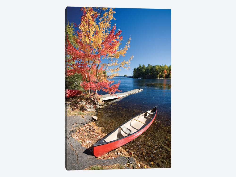 Fall Colors And Canoe, Maine, New England, USA by Gareth McCormack 1-piece Canvas Art Print