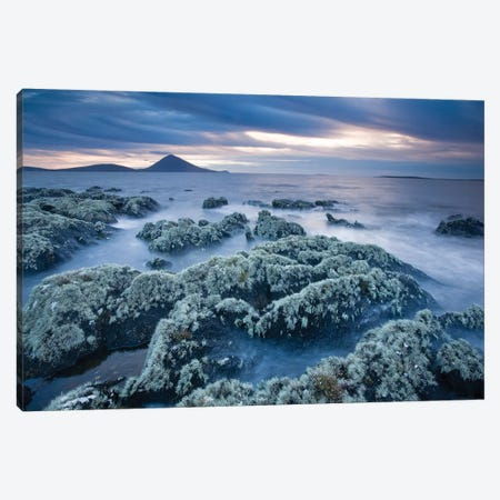 Lichen-Covered Coastline, Ballycroy, County Mayo, Ireland Canvas Print #GAR158} by Gareth McCormack Canvas Art Print