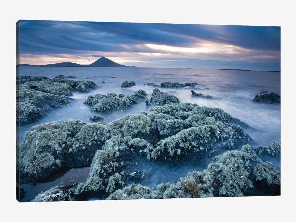 Lichen-Covered Coastline, Ballycroy, County Mayo, Ireland 1-piece Canvas Art