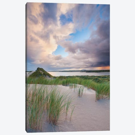 Sand Dunes, Enniscrone, County Sligo, Ireland Canvas Print #GAR175} by Gareth McCormack Canvas Artwork