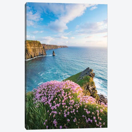 Thrift On The Edge I, Cliffs Of Moher, County Clare, Ireland Canvas Print #GAR193} by Gareth McCormack Canvas Print
