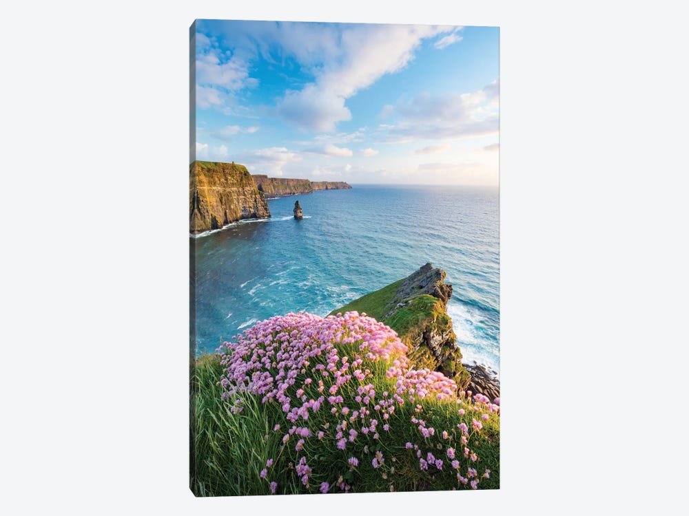 Thrift On The Edge I, Cliffs Of Moher, County Clare, Ireland by Gareth McCormack 1-piece Art Print