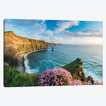 Thrift On The Edge II, Cliffs Of Moher, County Clare, Ireland Canvas Print #GAR194} by Gareth McCormack Canvas Wall Art
