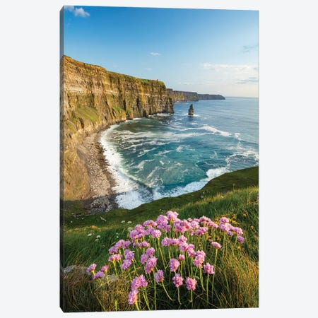 Thrift On The Cliffs Of Moher I Canvas Print #GAR203} by Gareth McCormack Canvas Print