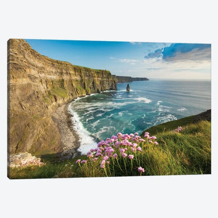 Thrift On The Cliffs Of Moher II Canvas Print #GAR204} by Gareth McCormack Canvas Artwork