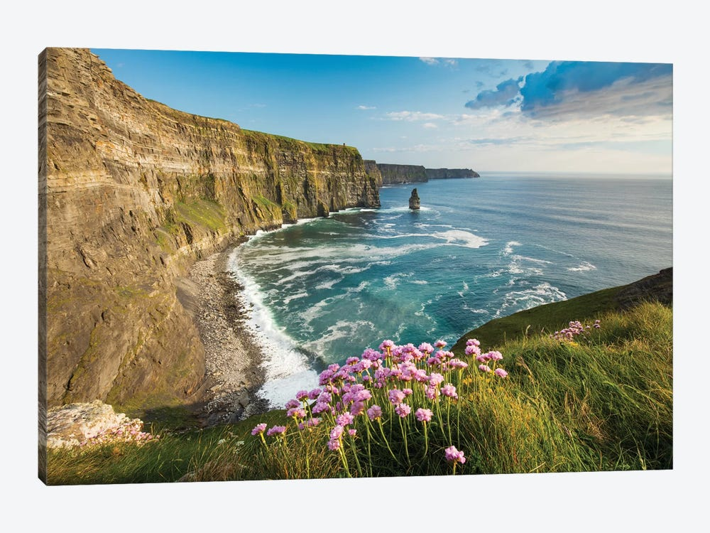 Thrift On The Cliffs Of Moher II by Gareth McCormack 1-piece Canvas Art Print
