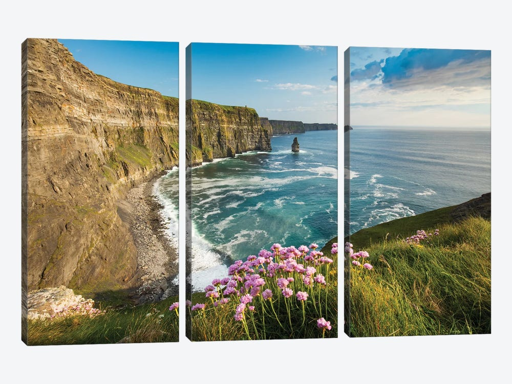 Thrift On The Cliffs Of Moher II by Gareth McCormack 3-piece Canvas Print