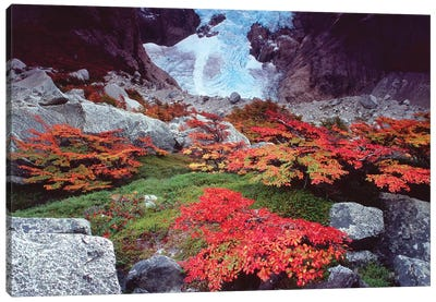 Patagonia Ice Fall Canvas Art Print