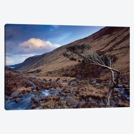 Glenveagh Canvas Print #GAR222} by Gareth McCormack Canvas Art Print