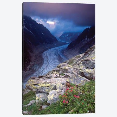 Mer de Glace and Alpenrose Canvas Print #GAR224} by Gareth McCormack Canvas Wall Art