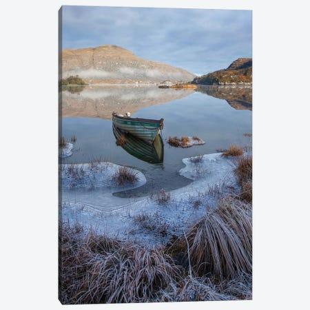 Killarney Lakes, Winter Morning I Canvas Print #GAR228} by Gareth McCormack Art Print